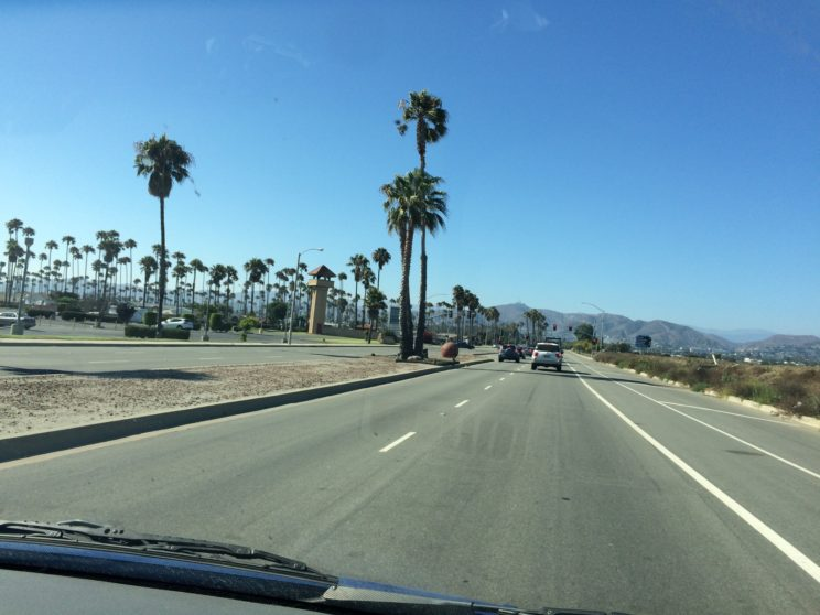 Ventura's Palmenmeer - so oft passiert und nun zum Abschied 😔