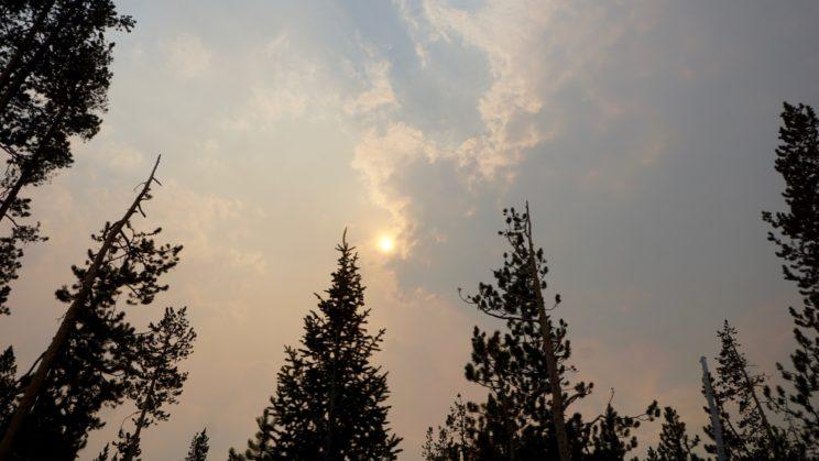 Rauch und Sonne wechselten sich an manchen Stellen ab